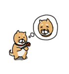 行事使い分けスタンプ(柴&パグ)(個別スタンプ:18)
