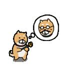 行事使い分けスタンプ(柴&パグ)(個別スタンプ:19)