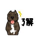 ピット エス(個別スタンプ:02)