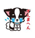 関西弁チワワンスタンプ(個別スタンプ:07)