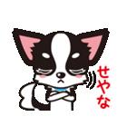 関西弁チワワンスタンプ(個別スタンプ:10)