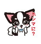 関西弁チワワンスタンプ(個別スタンプ:15)