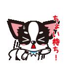 関西弁チワワンスタンプ(個別スタンプ:23)