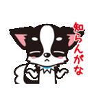 関西弁チワワンスタンプ(個別スタンプ:26)