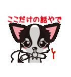 関西弁チワワンスタンプ