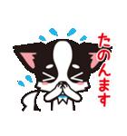 関西弁チワワンスタンプ(個別スタンプ:36)