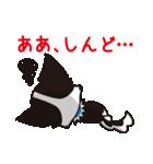 関西弁チワワンスタンプ(個別スタンプ:40)