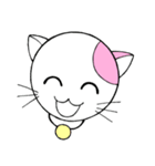 福猫の桜ちゃん(個別スタンプ:31)
