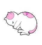 福猫の桜ちゃん(個別スタンプ:36)