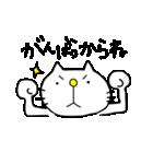みちのくねこ〜時々気仙沼弁〜(個別スタンプ:6)