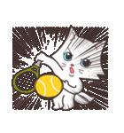 ペルシャ猫こゆき(涼しい日常会話)