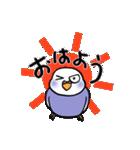 """""""セキセイインコの日常2"""" 鳥さんと一緒05(個別スタンプ:01)"""