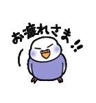 """""""セキセイインコの日常2"""" 鳥さんと一緒05(個別スタンプ:05)"""