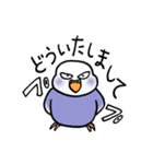 """""""セキセイインコの日常2"""" 鳥さんと一緒05(個別スタンプ:08)"""