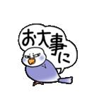"""""""セキセイインコの日常2"""" 鳥さんと一緒05(個別スタンプ:10)"""
