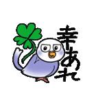 """""""セキセイインコの日常2"""" 鳥さんと一緒05(個別スタンプ:13)"""