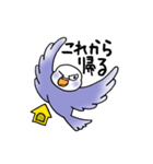"""""""セキセイインコの日常2"""" 鳥さんと一緒05(個別スタンプ:25)"""