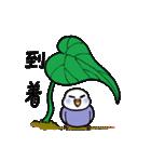 """""""セキセイインコの日常2"""" 鳥さんと一緒05(個別スタンプ:26)"""