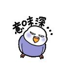 """""""セキセイインコの日常2"""" 鳥さんと一緒05(個別スタンプ:30)"""