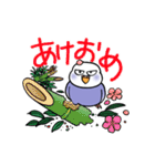 """""""セキセイインコの日常2"""" 鳥さんと一緒05(個別スタンプ:40)"""