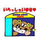 Lovely Puppy Vol.2 おりこう柴ちゃん(個別スタンプ:06)