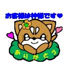 Lovely Puppy Vol.2 おりこう柴ちゃん(個別スタンプ:07)