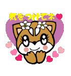 Lovely Puppy Vol.2 おりこう柴ちゃん(個別スタンプ:11)