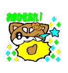 Lovely Puppy Vol.2 おりこう柴ちゃん(個別スタンプ:17)