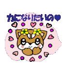 Lovely Puppy Vol.2 おりこう柴ちゃん(個別スタンプ:19)