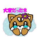 Lovely Puppy Vol.2 おりこう柴ちゃん(個別スタンプ:20)