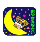 Lovely Puppy Vol.2 おりこう柴ちゃん(個別スタンプ:24)