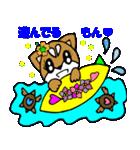 Lovely Puppy Vol.2 おりこう柴ちゃん(個別スタンプ:27)