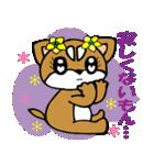 Lovely Puppy Vol.2 おりこう柴ちゃん(個別スタンプ:28)
