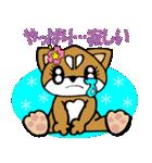 Lovely Puppy Vol.2 おりこう柴ちゃん(個別スタンプ:36)