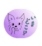 ヨーキーぽよ倶楽部Vol.2・おでかけ編(個別スタンプ:14)