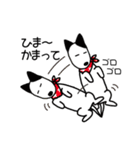 バケツ犬ケル2(個別スタンプ:35)