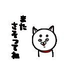 白い犬。2(個別スタンプ:16)