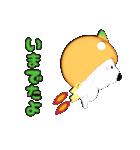 みかん大好き shozEEの白くま 被り物みかん(個別スタンプ:07)