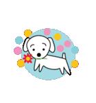 眉毛犬シロ(個別スタンプ:01)