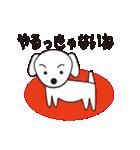 眉毛犬シロ(個別スタンプ:09)