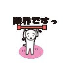 眉毛犬シロ(個別スタンプ:10)