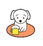 眉毛犬シロ(個別スタンプ:11)