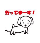 眉毛犬シロ(個別スタンプ:16)