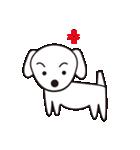眉毛犬シロ(個別スタンプ:33)