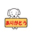眉毛犬シロ(個別スタンプ:36)