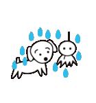 眉毛犬シロ(個別スタンプ:38)