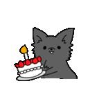 誕生日祝い 黒い犬ピッピとパピヨンぱぴ子(個別スタンプ:01)