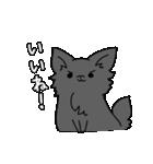 誕生日祝い 黒い犬ピッピとパピヨンぱぴ子(個別スタンプ:11)