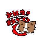 誕生日祝い 黒い犬ピッピとパピヨンぱぴ子(個別スタンプ:21)