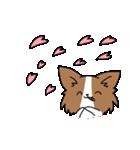 誕生日祝い 黒い犬ピッピとパピヨンぱぴ子(個別スタンプ:22)
